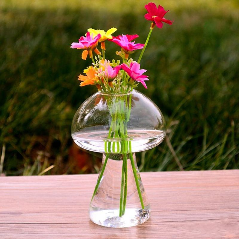 BUYINCOINS Mushroom Glass Plant Flower Vase Hydroponic  : 69716 1 11 from www.lazada.com.my size 800 x 801 jpeg 80kB